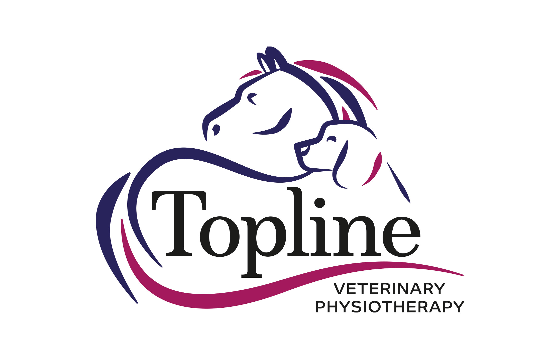 Topline Veterinary Physiotherapy logo design